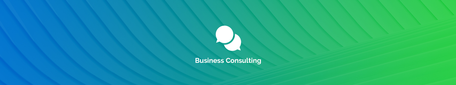 We offer professional consulting services in all of the Microsoft applications.